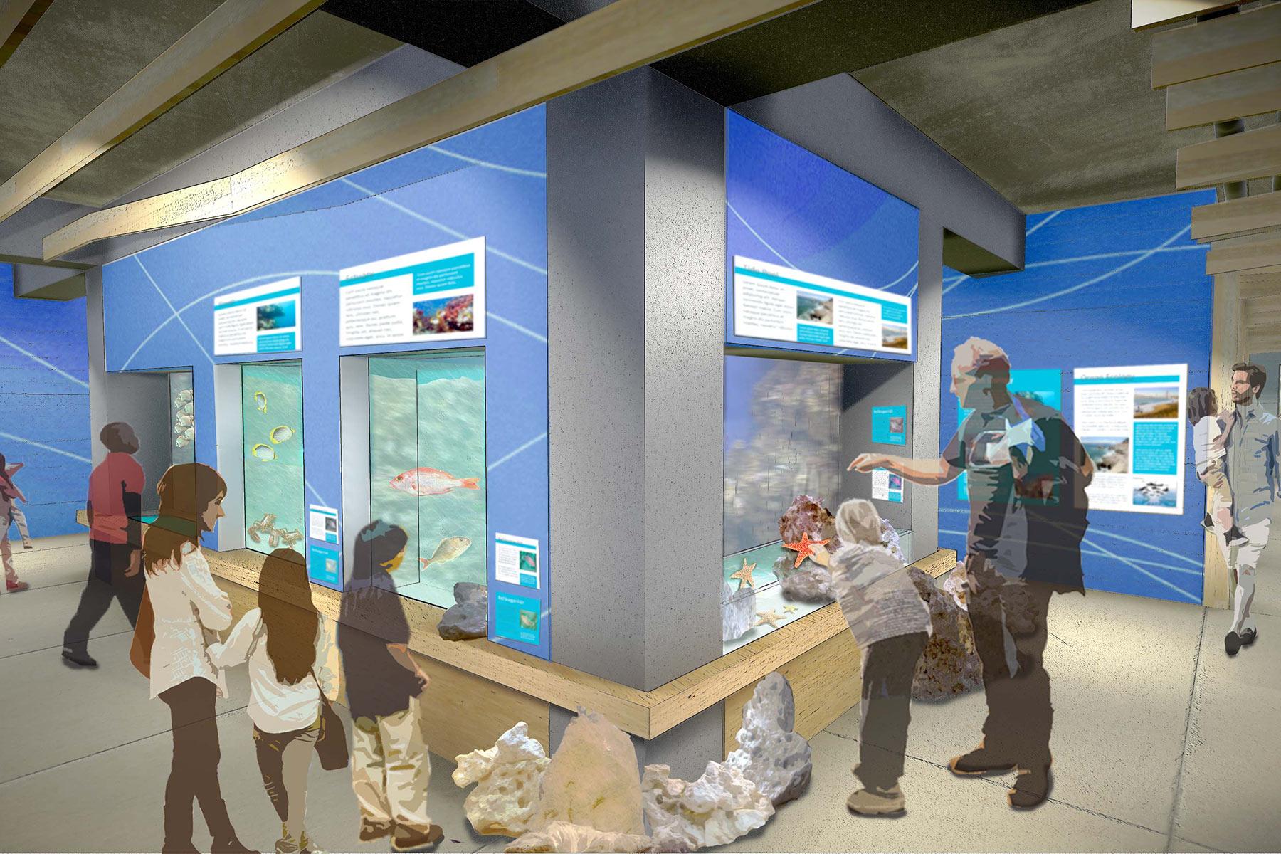 Oceans Exhibit
